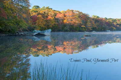 Dennis Pond, Yarmouth, MA. View of pond with autumn leaves reflected on water.